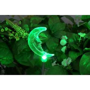 Solar Powered Garden Stake Light. Color Changing LED Light