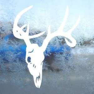 Whitetail BUCK Deer Skull White Decal Laptop Window White
