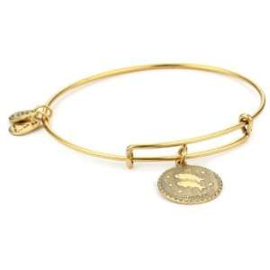 Alex and Ani Bangle Bracelet Bar Russian Gold Plated Pisces Bangle