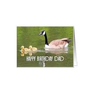 Happy Birthday Dad / Gosling Chicks & Mother Card: Health