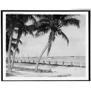 Biscayne Bay,Miami,Fla.