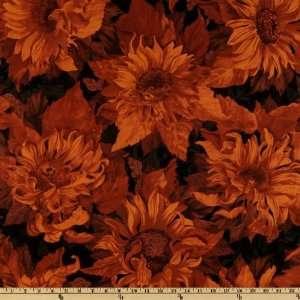 44 Wide Flowers Of The Sun Large Sunflowers Burnt Orange