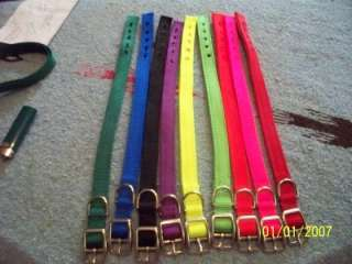 Webbing Dog Leash and Collar USA Made Heavy Duty