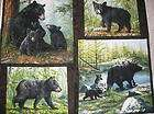 Bear Wolf Eagle Deer Picture Art Gun Safe Magnet