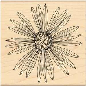 Penny Black Rubber Stamp 4X4 Sunburst Arts, Crafts