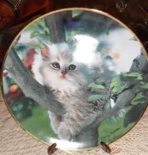 Fine Porcelain Franklin Mint Kitten Cat Plate Artist Nancy Matthews