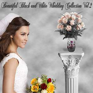 Photography Backdrops Green Screen BLACK AND WHITE WEDDING 2
