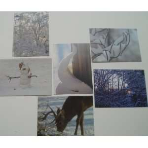 **SPRING SPECIAL8** Winter Scene Note Card Set