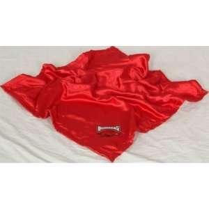 Arkansas Razorbacks NCAA Baby Blanket