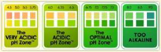 pH TEST STRIPS STIX for URINE x 80   ALKALISE, DETOX