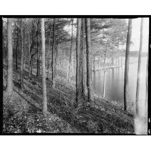 The Kellams,Princess Anne County,Virginia