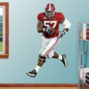 NFL Marcell Dareus Alabama Vinyl Wall Graphic Decal Sticker