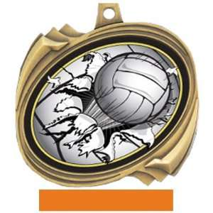 BUST OUT INSERT MEDAL   Custom Volleyball: Sports & Outdoors