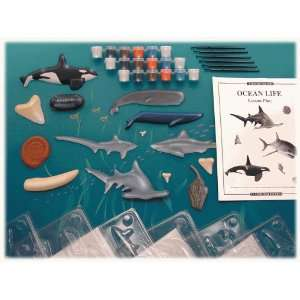 Eyewitness Ocean Life Classroom Science Kit Toys & Games